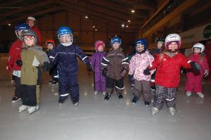 Barn från Notens och Sparvens förskolor i Edsbyn åkte skridsko i bandyarenan för att få skridskomärket.