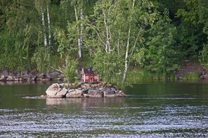 Den lilla ön i Dalälven har blivit svanens hem.