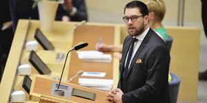 SD-ledaren Jimmie Åkesson verkade i partiledardebatten inte veta vad hans partikamrater hade gjort i EU-parlamentet de senaste fem åren. I stället tog han upp helt oväsentliga saker i debatten, till exempel att C-ledaren Annie Lööf hade skrivit