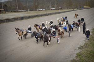 Varje år körs det cirka 1 200 ponnylopp runt om i landet och det finns ungefär 800 aktiva kuskar och ryttare. Här är det 15 ekipage från Dannero Ponnytravklubb som värmer upp inför helgens lopp.