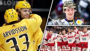 Emil Pettersson fick se brorsan Elias göra succé i SHL och Timrå gå upp i samma serie. Bild: TT/Bildbyrån/Montage