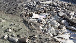 En valaffisch har hamnat på Svartåns botten.