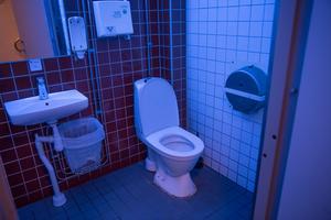 Den blå belysnignen på toaletterna i Lunahuset gör det lite svårt att se.