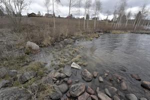 Avloppsslam efter det att spill- och avloppsvatten flödat över vid Lidens badplats.