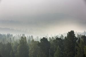Röken från bränderna har spridits över stora delar av Hälsingland.