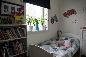 Tjuven eller tjuvarna ska ha tryckt in fönstret och klättrat in i lägenheten via Maries sons rum.