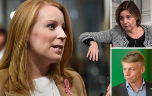Centerpartiet, med partiledaren Annie Lööf, har flera konkreta förslag för svensk landsbygd. Förslag som möter motstånd av Miljöpartiet, med språkrören Isabella Lövin och Per Bolund. Foto: TT