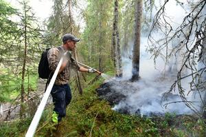 Sommarens skogsbränder slog hårt mot länet.