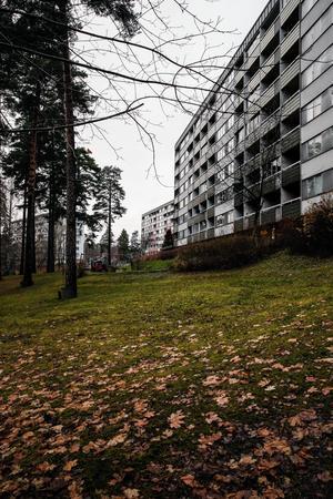 Telge bostäder vill bygga ett antal punkthus med varierande höjd  - det högsta kan bli 16 våningar högt - nedanför flerfamiljshusen på Barrstigen.