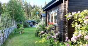 Familjen Wallins sommarparadis på Eskön.