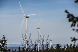 Vindkraftverk är en viktig del i omvandlingen till fossilfria energikällor.