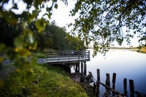 Nu går det inte att grilla vid Saras brygga längre. Örnsköldsviks kommun har hittat dioxin i backen och som en första åtgärd valde man att ta bort vindskyddet och grillringen.
