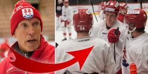 Fredrik Andersson har förhoppningar att Timrå ska – precis som förra vintern – vara stabila i powerplay. Under stora delar låg de runt 25 procent. Foto: Jennifer Engström.