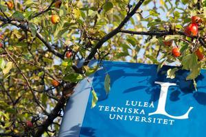 Universitetet satsar mer på forskning kring datacenter sedan Facebook blev granne.