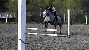 Christina har ridit i flera år, och ägnar sig gärna åt hästhoppning.