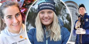 Bilden är ett montage. Bilder: TT, Sanna Svanebo och Per Hansson.
