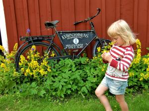 """Tea i grönskan på Stubberuds gård i Ölme."" Foto: Tage Gustafsson"