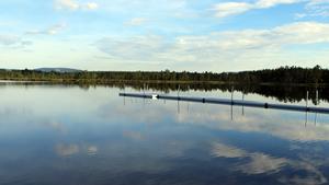 Sandtjärn i Sveg är ett av de badvatten som testats genom vattenprov och fått godkänt.