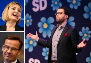 I opinionen är Sverigedemokraterna numera lika stort som Kristdemokraterna och Moderaterna tillsammans. Foto: TT