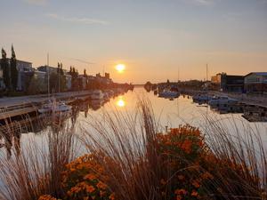 Underbar soluppgång på Alderholmen när jag cyklade till jobbet 16/8 06:00. Foto: Tobias Broberg