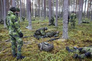 Försvaret tränade strid och sjukvård i skogen utanför Söderhamn fredag 21 februari.