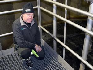 Drifttekniker Lars Ryttare inne i det reningstorn som utgör arbetsplats och bostad för många miljoner näringssugna bakterier.