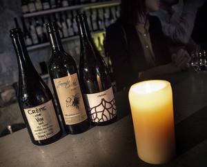 Tjeckiska viner är nästan okända i Sverige, då de flesta förknippar landet med öl.