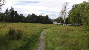Här på ängen mellan Söråkers folkets hus och annexet till Söråkers herrgård planeras det för förskolan.