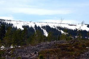 Även om det är full fart på vårfloden, så finns det kvar stora mängder snö i fjällen.