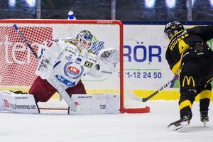 Oskarshamns målvakt Adam Åhman har varit en av hockeyallsvenskans bästa burväktare hittills. Foto: Tobias Sterner / Bildbyrån