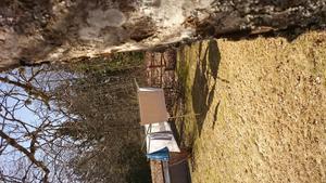 Så här skriver Barbro om sin bild: Äntligen, isen har sjunkit i Spillersboda  och båtar far på vattnet,  hängt tvätt att torka i skön vårsol, fågelsång, blåsippor, vintergäck och  luften full av måsskrik. Nu är det vår. Foto: Barbro Hult