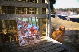 """""""Börja med höns i trädgården"""" är en handfast bok med råd om allt du behöver veta för att komma i gång med höns och kunna hämta färska ägg på tomten. Hönan i bakgrunden är nyfiken på boken som hennes matte Anette Sievers har skrivit."""