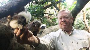 Jonas Wahlström bland sydamerikanska sakiapor och bomullshuvudtamariner i Skansen-Akvariets regnskog.