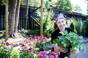 Trädgårdsmästaren Kristel Kängsep tipsar om värme- och torktåliga växter.