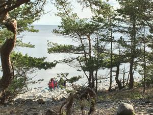 Örens naturreservat lockar till flera aktiviteter,