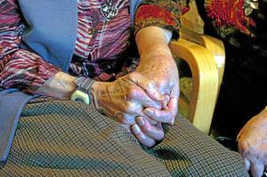 Gymnasieelever skulle, enligt medborgarförslaget, exempelvis kunna besöka ensamma inom äldrevården.