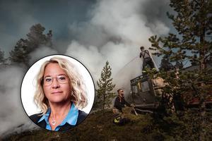 Fotomontage: Anton Ryvang.Tidning i mobilen – förstahandsvalet för nyheterna om skogsbränderna – DT:s chefredaktör:
