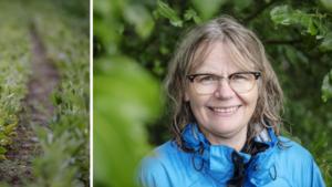 """Lena Nyholm i Örnsköldsvik sa upp sig och blev grönsaksbonde:  """"Hoppas att kunna bidra till produktionen av bra mat"""""""