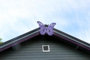 En lila fjäril på taket.