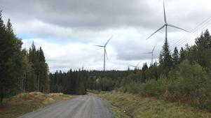 När vindkraftparker byggs förutsätter det att vägnätet med skogsbilvägar rustas upp. Tack vare det blir skogsbruket i området effektivare och på sikt lönsammare när skogsråvaran kan transporteras ut ur skogarna på de upprustade vägarna. Foto: Erik Löfgren