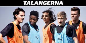Helmer Andersson, Nadir Ayéva, Adam Bark, Dennis Collander och Jake Larsson. (Bilden är ett montage)