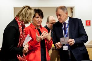 Birgitta Sacrédeus under ett möte i Bryssel tidigare i år med EU:s kommissionär för hälsa och matsäkerhet - Vytenis Andriukaitis. Foto: European Committee of the Regions
