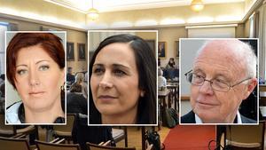 Montage. Nya ledamöter i kommunfullmäktige i Borlänge.