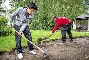 Årets sommarpraktikanter får en gåvocheck på 120 kronor av Skövde kommun som en välkomstgåva. Bilden en är genrebild.