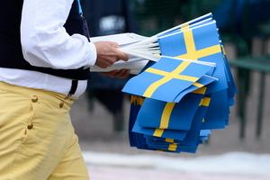 Sverigedemokraterna har fyra fokusområden som de vill belysa extra mycket i årets valrörelse.