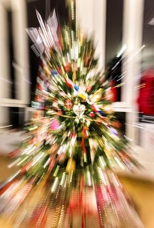 Julgranen skenade under en av Ruggugglans föreställningar.