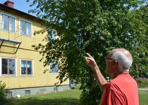 Kenit Ankarkrona pekar på rummet där han bodde som ung.