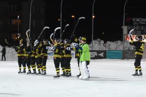 På söndagen blev AIK klart för elitserien nästa säsong.