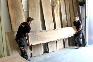 Den största brädan i alm är närmare en meter bred. Nu ska träet bli inredning men exakt vad vet de inte än.