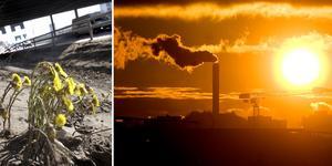 """""""Den gröna klimatomställningen ska inte bara uppfattas som en börda för att upprätthålla vårt existensberättigande. Omställningen medför massor av nyttor..."""" skriver Marcus Karlén (S), politiker i Mora kommun.Foto: TT/Montage"""